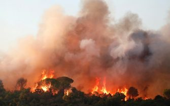 epa09418270 Blazes are raging during a forest fire around Cannet des Maures, France, 17 August 2021. Firefighters are battling wildfires and thousands of residents are evacuated in the area near St. Tropez.  EPA/GUILLAUME HORCAJUELO