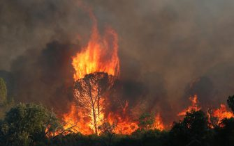 epa09418168 Blazes are raging during a forest fire around Cannet des Maures, France, 17 August 2021. Firefighters are battling wildfires and thousands of residents are evacuated in the area near St. Tropez.  EPA/GUILLAUME HORCAJUELO