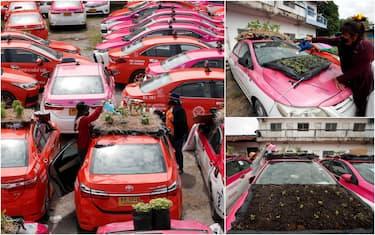Hero taxi bangkok Ansa