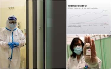 Hero vaccini contagi decessi