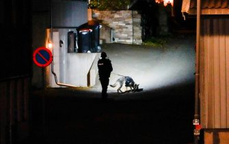 """A Police officer uses a sniffer dog at the scene where they are investigating in Kongsberg, Norway after a man armed with bow killed several people before he was arrested by police on October 13, 2021. - A man armed with a bow and arrows killed several people and wounded others in the southeastern town of Kongsberg in Norway on October 13, 2021, police said, adding they had arrested the suspect. """"We can unfortunately confirm that there are several injured and also unfortunately several killed in this episode,"""" local police official Oyvind Aas told a news conference. """"The man who committed this act has been arrested by the police and, according to our information, there is only one person involved."""" - Norway OUT (Photo by Håkon Mosvold Larsen / NTB / AFP) / Norway OUT (Photo by HAKON MOSVOLD LARSEN/NTB/AFP via Getty Images)"""