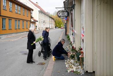 Strage in Norvegia, killer ha ucciso con un coltello e non con l'arco