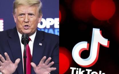 Donald Trump crolla su TikTok, e la sfida è sospesa in attesa di Biden
