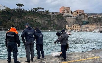 Sorrento, morta la balena rimasta bloccata nel porto