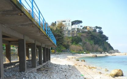 Capri, gabbiano ruba un panino e viene ucciso: rissa in spiaggia