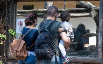 Famiglie al primo giorno di riapertura al pubblico del Bioparco con nuove modalità di accesso per garantire il rispetto del distanziamento sociale e della sicurezza., Roma, 29 maggio 2020. ANSA/CLAUDIO PERI