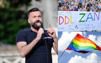 Ddl Zan, i dieci articoli del disegno di legge contro l'omofobia