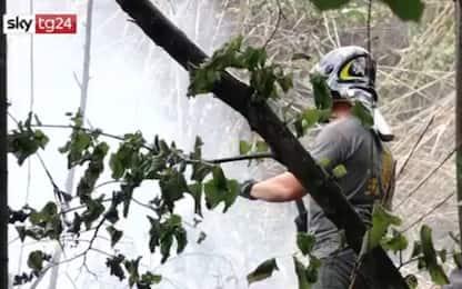 Roma, incendio nella riserva naturale di Monte Ciocci. VIDEO
