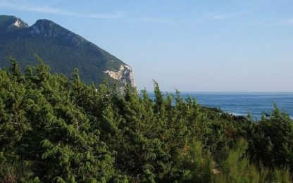 Parte del promontorio del Circeo in vendita: lo acquista Regione Lazio