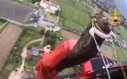 Rieti, pompieri celebrano Santa Barbara con processione in elicottero