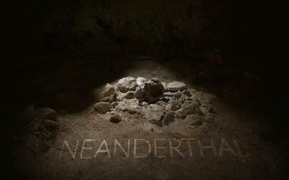 San Felice Circeo, scoperti i resti di nove uomini di Neanderthal