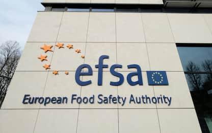 Alimenti, secondo l'Efsa il biossido di titanio (E171) non è sicuro