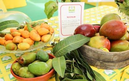 Alte dosi di vitamina A e C: le proprietà del mango descritte dall'AHA