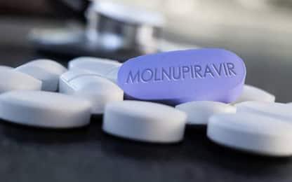 Coronavirus in Italia e nel mondo: le news del 25 ottobre. LIVE