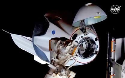 Crew Dragon, possibile rientro anticipato degli astronauti della Nasa