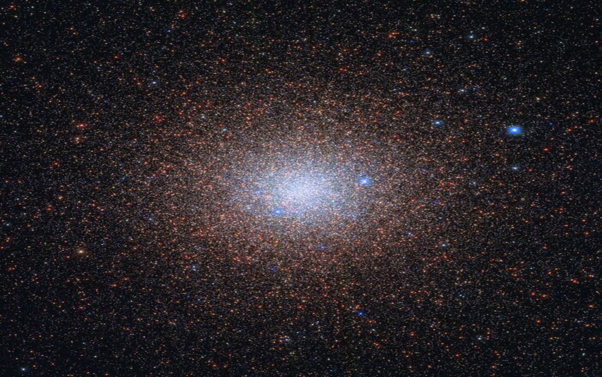 Le stelle presenti nell'ammasso globulare NGC 6441