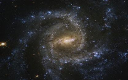 Spazio, le antenne di MeerKAT rivelano due radiogalassie giganti