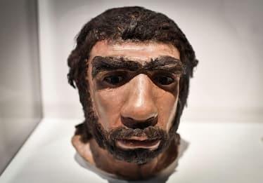 Studio: tracce di Dna di Neanderthal in esseri umani moderni