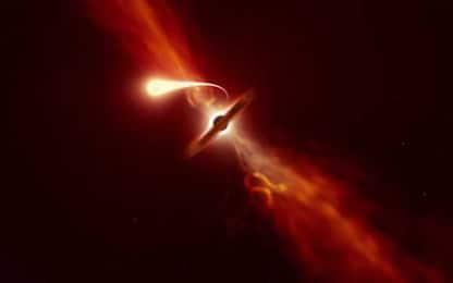 Stella inghiottita da buco nero, catturati gli ultimi istanti di vita