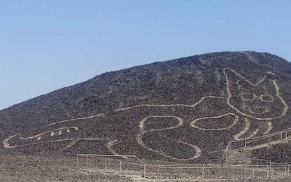 Perù, Linee di Nazca: scoperto un nuovo geoglifo a forma di gatto