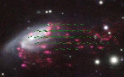 "Osservata una ""galassia medusa"" plasmata dai campi magnetici"