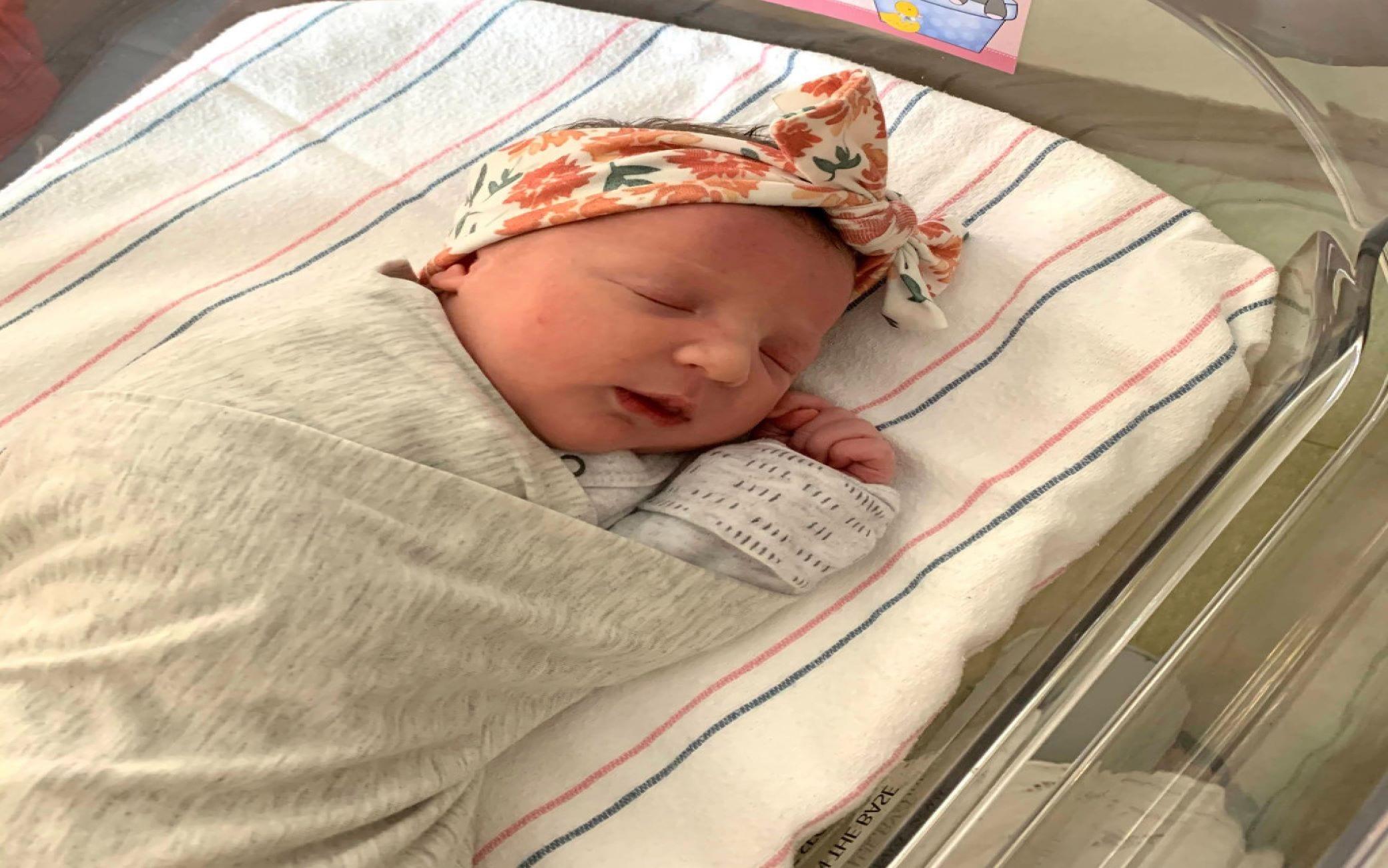 Molly, la storia della bimba nata da un embrione congelato 27 anni fa