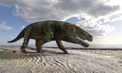 Orme fossili di grandi coccodrilli scoperte nelle Alpi occidentali