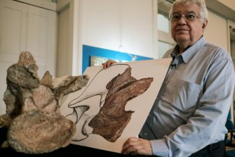 The Director of Earth Science Museum Diogenes de Almeida Campos shows an image of the biggest piece of fossil of a dinosaur's neck that was collected in 1953 by the Brazilian paleontologist Llewellyn Ivor Price at Earth Science Museum in Rio de Janeiro on October 6, 2016. The dinosaur newly named Austroposeidon Magnificus was about 25 meters long and the largest among 9 species discovered in Brazil.  / AFP / YASUYOSHI CHIBA        (Photo credit should read YASUYOSHI CHIBA/AFP via Getty Images)