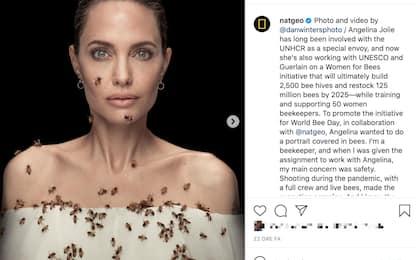 Angelina Jolie coperta di api contro rischio estinzione per NatGeo
