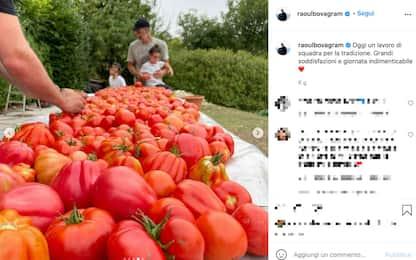 Raoul Bova raccoglie i pomodori che non vanno bene per la salsa