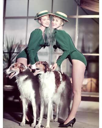 Alice und Ellen Kessler - Die Kessler Zwillinge. Studioaufnahme mit Hunden für den Film: Der Graf von Luxemburg, 1957. Alice and Ellen Kessler - The Kessler Twins. Studio Still with dogs 1959.