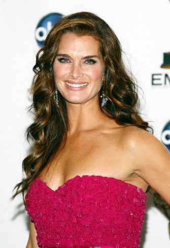 LOS ANGELES, CA - SEPTEMBER 21:  Actress Brooke Shields poses in the press room during the 60th Primetime Emmy Awards held at Nokia Theatre on September 21, 2008 in Los Angeles, California.  (Photo by Frazer Harrison/Getty Images)