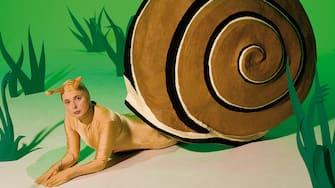 Green Porno Green Porno  Year: 2008 -  USA Isabella Rossellini  Director: Isabella Rossellini Short
