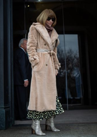 NEW YORK, NEW YORK - FEBRUARY 11: Anna Wintour editor-in-chief of Vogue attends the Carolina Herrera fall 2019 runway show during (NYFW) New York Fashion Week held at New York Historical Society 170 Central Park West on February 11, 2019 in New York City. (Photo by Anthony DelMundo/Getty Images)