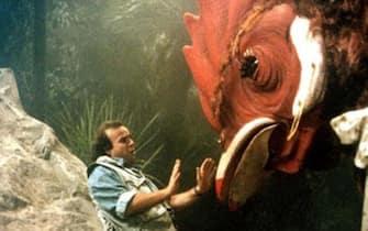 chicken park film