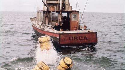 La barca del film Lo Squalo torna in mare