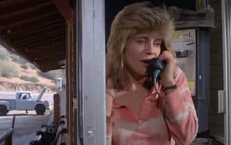 Linda Hamilton Terminator