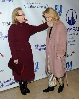 NEW YORK, NY - NOVEMBER 20:  Meryl Streep (L) and Mamie Gummer attend the  2015 Citymeals-On-Wheels Power Lunch For Women at The Plaza Hotel on November 20, 2015 in New York City.  (Photo by Brad Barket/Getty Images)