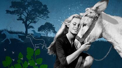 Brigitte Bardot protagonista di un doc animalista in onda su Sky Arte