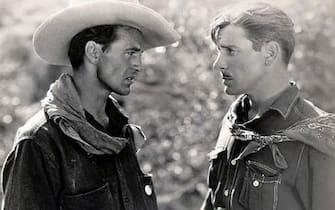 Fiore del deserto Gary Cooper