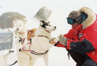 """Pictured:   Jerry (PAUL WALKER) tends to one of the dogs in a scene from Disney's EIGHT BELOW, directed by Frank Marshall.         THIS MATERIAL MAY BE LAWFULLY USED IN ALL MEDIA EXCLUDING THE INTERNET, ONLY TO PROMOTE THE RELEASE OF THE MOTION PICTURE ENTITLED """"EIGHT BELOW"""" DURING THE PICTURE'S PROMOTIONAL WINDOWS. ANY OTHER USE, RE-USE, DUPLICATION OR POSTING OF THIS MATERIAL IS STRICTLY PROHIBITED WITHOUT THE EXPRESS WRITTEN CONSENT OF BUENA VISTA PICTURES. AND COULD RESULT IN LEGAL LIABILITY. YOU WILL BE SOLELY RESPONSIBLE FOR ANY CLAIMS, DAMAGES, FEES, COSTS, AND PENALTIES ARISING OUT OF UNAUTHORIZED USE OF THIS MATERIAL BY YOU OR YOUR AGENTS.     NOT FOR INTERNET USE. APPROVED FOR PRINT OUTLETS ONLY."""