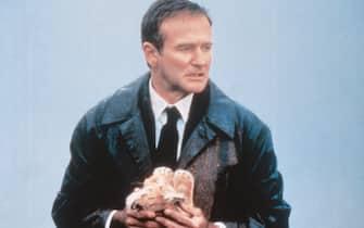 Robin Williams nel film Al di là dei sogni