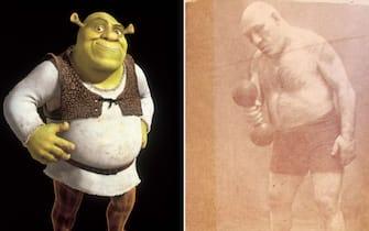 Il personaggio del film Shrek, uscito nel 2001, messo a confronto con una foto del wrestler francese Maurice Tillet (1903-1954)