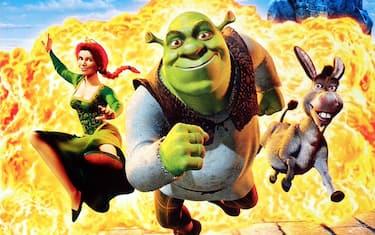 Un'immagine del film Shrek (2001)