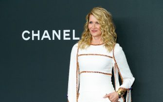 NEW YORK, NEW YORK - NOVEMBER 12: Honoree Laura Dern attends the 2019 Museum Of Modern Art Film Benefit: A Tribute To Laura Dern at Museum of Modern Art on November 12, 2019 in New York City. (Photo by Sean Zanni/Patrick McMullan via Getty Images)