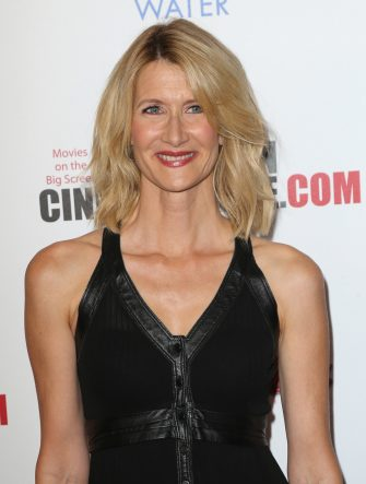 LOS ANGELES, CA - OCTOBER 30:  Actress Laura Dern attends the 29th American Cinematheque Award Honoring Reese Witherspoon - Arrivals at the Hyatt Regency Century Plaza on October 30, 2015 in Los Angeles, California.  (Photo by David Livingston/Getty Images)
