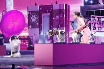 "AMERICA'S GOT TALENT: THE CHAMPIONS -- ""The Champions Finals"" Episode 206 -- Pictured: Alexa Lauenburger -- (Photo by: Trae Patton/NBC)"