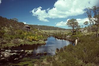 Plateau, Barrington Tops. Barrington Tops National Park, New South Wales, Australia. (Photo by: Auscape/Universal Images Group via Getty Images)