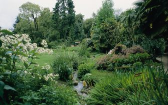 ITALY - JANUARY 01:  Giardino Botanico. Garden of Andre Heller in Gardone.  (Photo by Imagno/Getty Images)  [Giardino Botanico: Der Garten von Andre Heller in Gardone.]