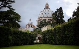 VATICAN CITY, VATICAN - APRIL 28:  A general view of St. Peter's Basilica seen from the Vatican Gardens during the Seminar 'Protect the Earth, Dignify Humanity' Workshopat the Pontifical Academy of Sciences at Casina Pio IV on April 28, 2015 in Vatican City, Vatican. The one day international symposium has been organized by the Pontifical Academy of Sciences and will include a video message to participants from Pope Francis about the Christian imperative of stewardship of creation.  (Photo by Giulio Origlia/Getty Images)